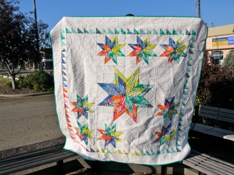 Safari Stars Road Trip Quilt